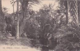 Senegal Rufisque Sangalcam - Senegal