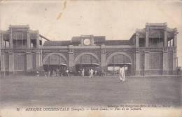 Senegal Saint-Louis Fete de la Tabaski