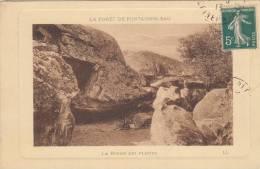 Foret De Fontainebleau La Roche Qui Pleure LL - Fontainebleau