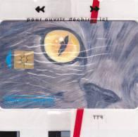 TELECARTE NSB 50 U - CEF 34 LE CHAT - 1300 Ex @  12/1999 - France