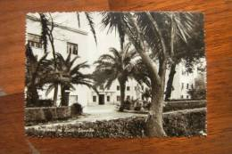 CARTOLINA  Di  PALERMO      A1039 - Palermo