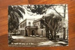 CARTOLINA  Di  PALERMO      A1040 - Palermo