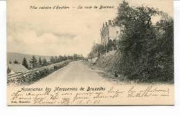 """Ancienne Cp """"  La Villa Scolaire D'Hastière, La Route De Blaimont, Association Des Marçunv"""" Avec Valeur Et Cachet 1903 - Hastiere"""