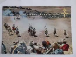 MAROC : Fantasia Dans Le Moyen Atlas - Marruecos