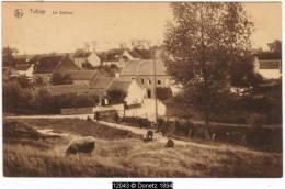 12043g Le STÉHOUX - Tubize - 1925 - Prairie - Tubize