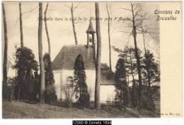 12080g CHAPELLE Dans Le Bois De La MORETTE - Asse