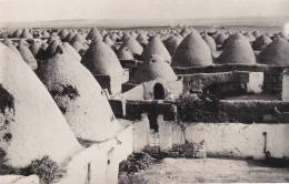 TURQUIE - Antioche - Turchia