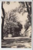 GEMOZAC 17 - Entrée De Ville - Route De Pons - CPSM Dentelée PF (1955)  - Charente Maritime - Other Municipalities