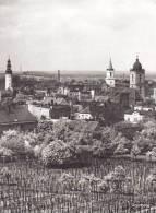 Ak Grünberg, Zielona Góra - Polonia