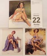 LOT 3 ELVGREN PINUP SEXY SEMI NUDE WOMEN ~ RISQUE ART~2007 TASCHEN CALENDAR #3 - Calendars