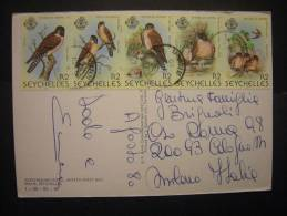 1980 - Birds, Compl. Ser., On Postcard To Italy - Seychelles (1976-...)