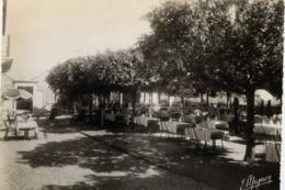 """77 CHARTRETTES - CPSM - Au Grillon Du Foyer, """"Chez Francis"""" - Les Terrasses - France"""