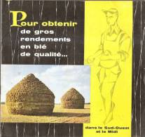 Agriculture-le Blé Dans Le Sud-ouest Et Le Midi- - Garden
