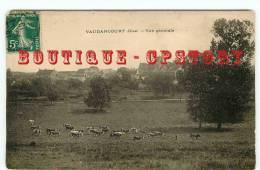 VACHE - Troupeau De Vaches Dans Un Pré - Dos Scané - Mucche