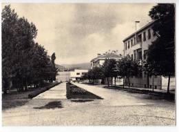 EUROPE MONTENEGRO NIKŠIĆ OLD POSTCARD - Montenegro