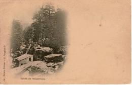 Cpa 20 Haute Corse Forêt De VIZZAVONA , Précurseur , Dos Vierge - Altri Comuni