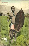 A Zulu Warrior - Zuid-Afrika