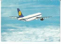 B71814 Lufthansa A 300 Airbus    Avion Airplane  2 Scans - 1946-....: Moderne