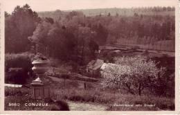 Conjoux Panorama Vers Dinant - Belgien