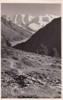 21057 Blick Von Alp Languard Auf Piz Palu -3550 Sommer Samedon