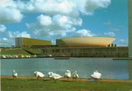 Brésil > Brasilia ( Brasil) Vista Parcial Do Congresso (Congress, Cisnes Brancos,Cygne Cygnes Blancs Swan  Snowy Swans ) - Brasilia
