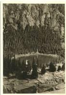 Carte-photo : Foto Leni Bauer, Much (Sieg): Schwarzwälder GebirgskrippeSankt Oswald Im Höllental... 1958/59(cf Scan) - Non Classés