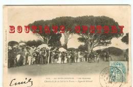 83 - FOUX COGOLIN - Hippodrome < Courses Chevaux Trot Attelé - Course Cheval - Chemins De Fer Du Sud De La France 1900 - France