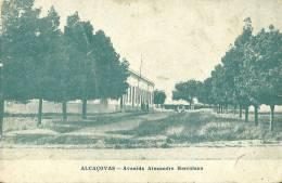 PORTUGAL - ALCAÇOVAS - AVENIDA ALEXANDRE HERCULANO - 1915 PC - Evora