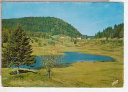 88.066/ Centre Militaire VI° Région - Ski Et Montagne - COL DES FEIGNES SOUS VOLOGNE - Cpsm - France