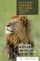Carte Publicitaire Expo Lion Afrique Sauvage - Lions