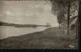 Cpsm MOSNES  (I.et.L.) .Bords De La Loire - France