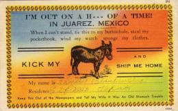 Ane -I'm Out On A H.... Of A Time In Juarez, Mexico - Kick My Ship Me Home  ( 48787) - Fantaisies