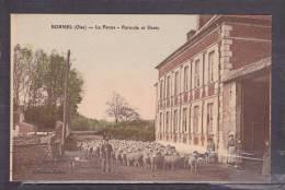 60 - CPA  Colorisée  De  BORNEL  -  Troupeau  De  Moutons  , La  Ferme - Purnode  Et  Denis  ( Très  Très  Animée ) - Autres Communes