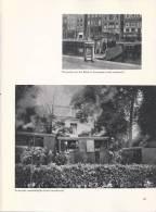 NL.- Boek - Weet Je Nog Wel. Een Boek Vol Pluche En Plezier (1900-1929). Tram. Veerpont. Dans. Voetbal. - Oud