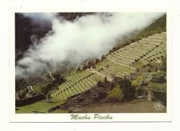 cp, P�rou, Cuzco, Machu Picchu, Terrasses et Maisons, �crite