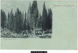 12745g SMYRNE - Grand Cimetière Turc - Turquie