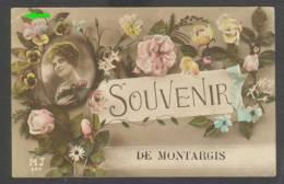 45 - Souvenir De Montargis - 21935* - Montargis