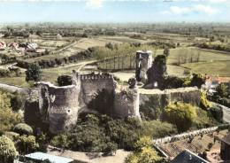 En Avion Au Dessus De CHAMPTOCE - Ruines Du Château - TTB Timbrée 1968 - Other Municipalities