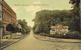 NIVELLES     BOULEVARD ET CHALET DE LA DODAINE - Nivelles
