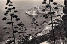 Dubrovnik 1964. - Kroatië