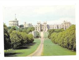 Cp, Angleterre, Winsor Castle, The Long Walk Showing Part Or The Tree-Lined..., écrite