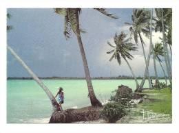 Cp, Photographe, Invitation Au Voyage - Francis Debaisieux, Voyagée 1989 - Other Photographers