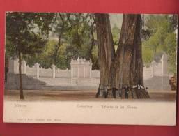 Q0957 Chapultepec,Rotanda De Los Héroes. ANIME.Pioneer. Non Circulé. - Mexiko