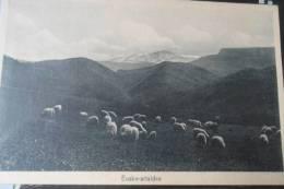 CEANURI  Manterola Euzko Artaldea - Vizcaya (Bilbao)