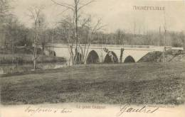 44 AIGREFEUILLE LE PONT DIDEROT - Aigrefeuille-sur-Maine
