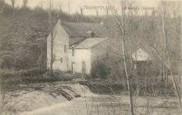 44 AIGREFEUILLE LE MOULIN DIDEROT - Aigrefeuille-sur-Maine