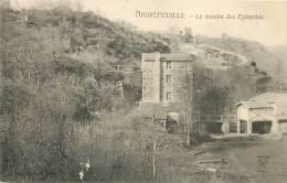 44 AIGREFEUILLE LE MOULIN DES EPINETTES - Aigrefeuille-sur-Maine