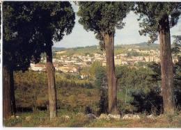 Italie--RIGNANO SULL´ ARNO--Panorama  ,cpm éd Cart.Olmi & Riv.Tab.Baldini - Italia