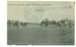 MAROC/ Types Marocains, La Halte Des Chameaux Dans Le Bled, (J.D.Lorin) - Maroc