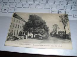 Carte Postale   Saint Léonard-fraize-st Die  ROUTE DE ST L2ONARD  0 ST DIE - Fraize